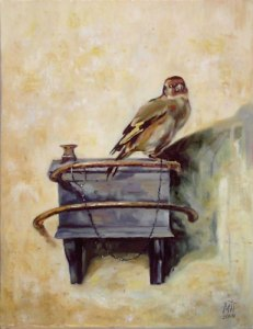 Goldfinch_C._Fabritius
